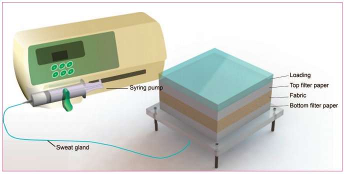Directional water transport tester for fabrics
