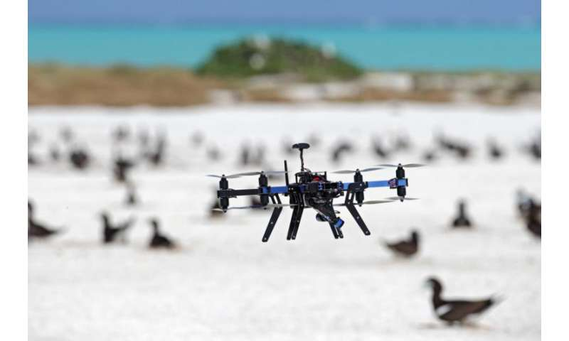 Drones revolutionize ecological monitoring
