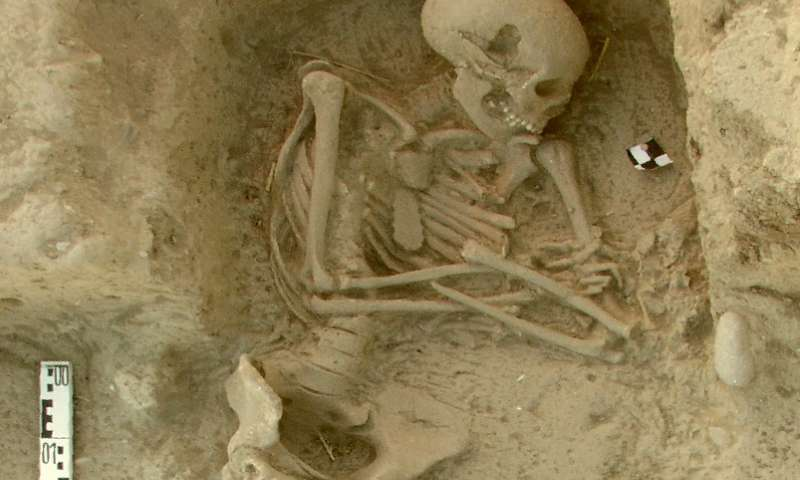 Early farmers from across Europe were direct descendants of Aegeans