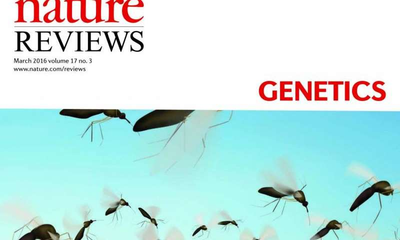 Engineered gene drives and the future