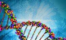 Ethics review identifies top two challenges for genome editing