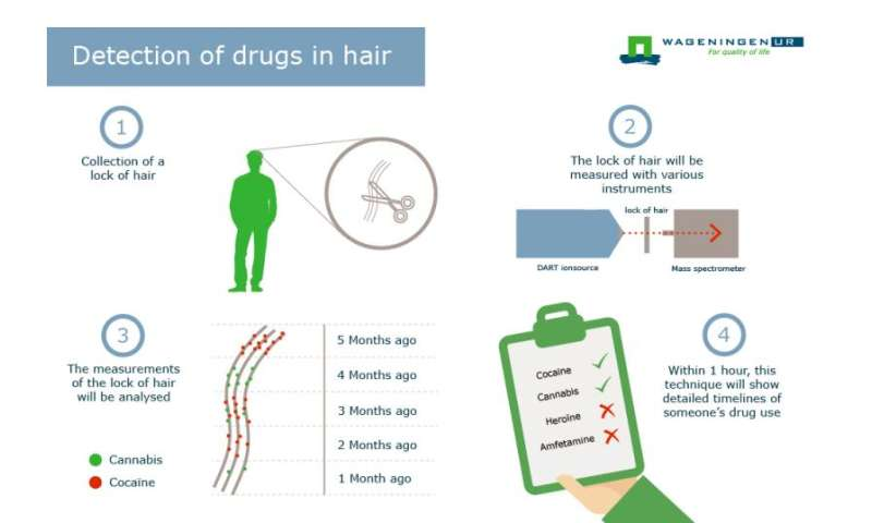 Evidence of drug use detectable in hair for months