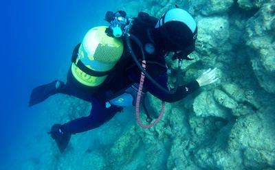 Expedition finds remains of fortified Roman port are much larger than previously thought