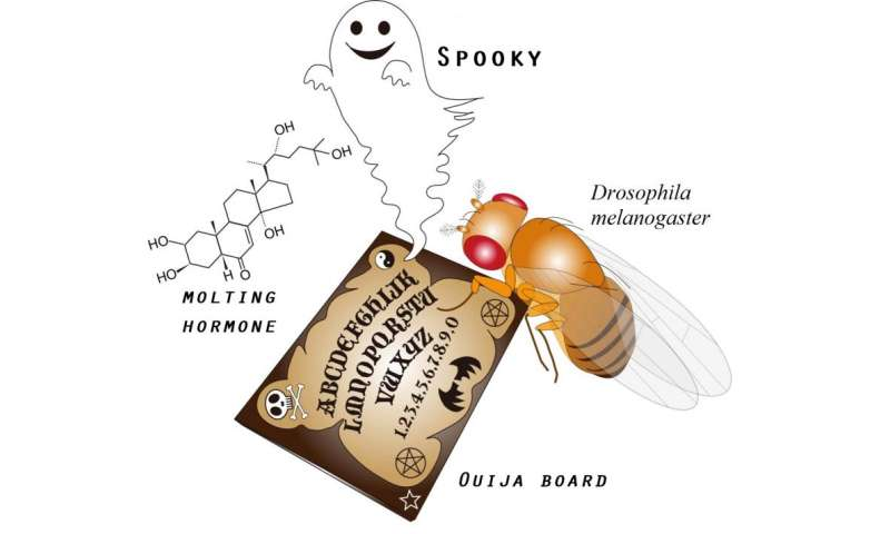 "Expression of a ""Ouija Board"" protein that can summon ""monster"" genes"