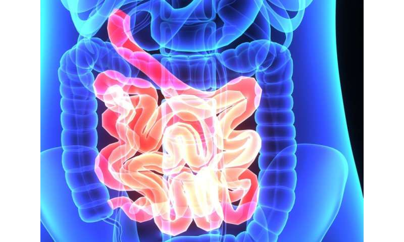 Fecal calprotectin levels ID severity of crohn's in small bowel