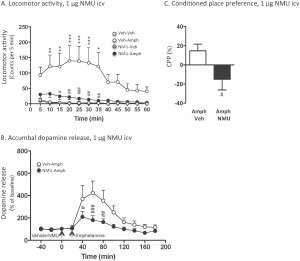 Fighting addiction through the gut-brain axis