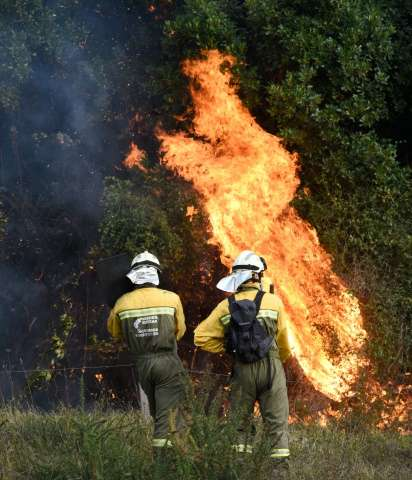 Firefighters tackle a blaze in an area affected by wildfires near the Basque town of Berango in northern Spain on December 28, 2