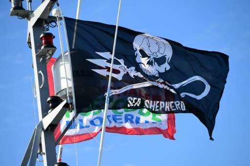 """For almost four decades, Sea Shepherd has fought to """"defend, conserve and protect"""" marine life in the vast expanses of"""