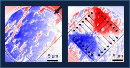 Future information technologies: Magnetic monopoles