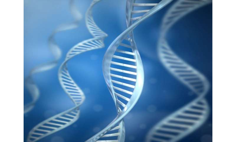 Genetic mortality risk can be attenuated by lifestyle