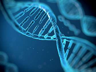 Genetic variants associated with colorectal brain metasases suscptibility and survival