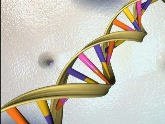 Genome editing: US could apply UK's approach to evaluate safety, ethics