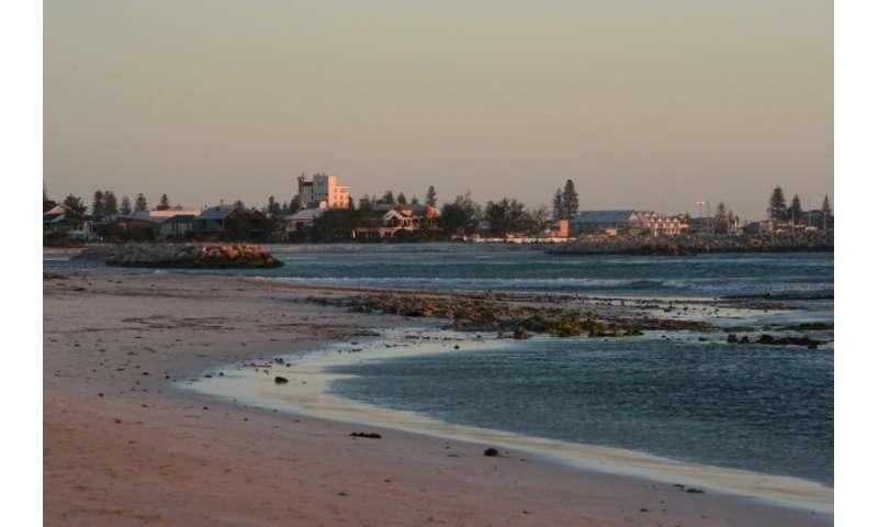 Geraldton beach erosion comes under the microscope
