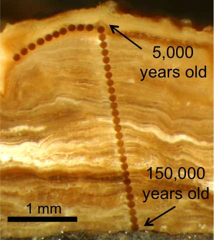 Growth rings on rocks give up North American climate secrets