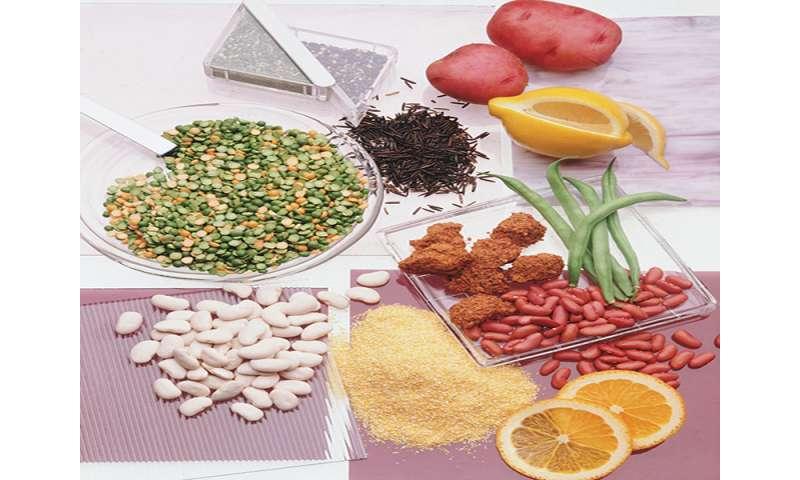 High-fiber diet may promote healthy, disease-free aging