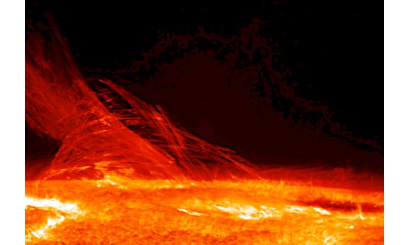 Highlights from a decade of JAXA and NASA's Hinode Solar Observatory