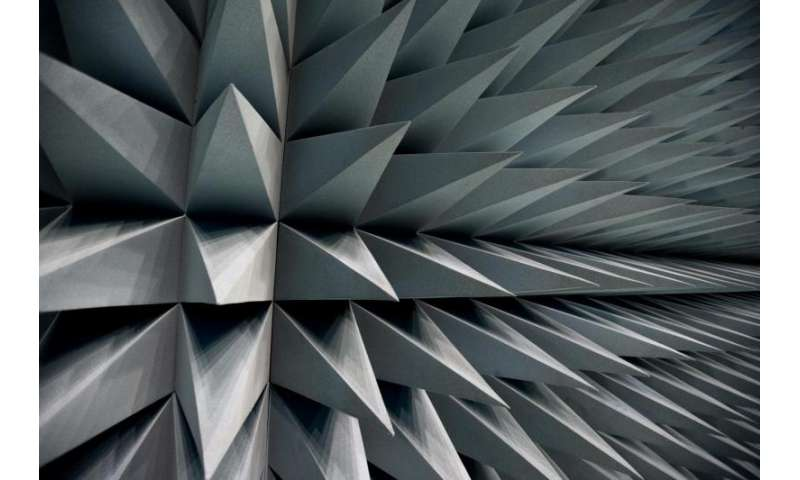 Image: Anechoic foam covering to simulate the endless void of space