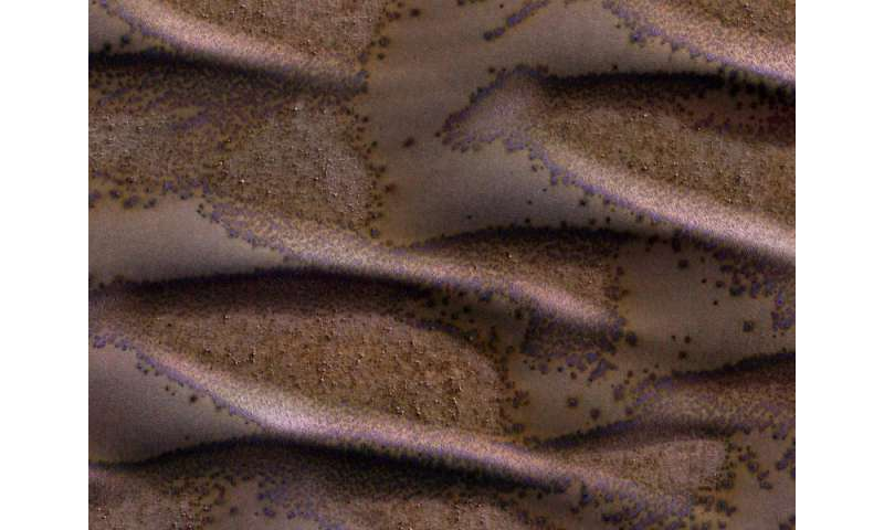 Image: Frosted dunes on Mars