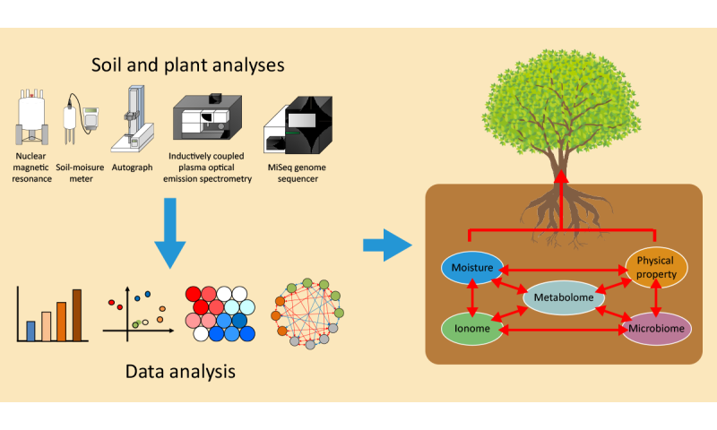 Improving poor soil with burned up biomass