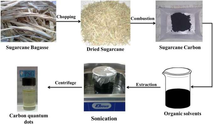 Indian researchers pioneer an alternate use for sugarcane waste
