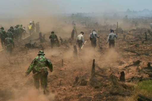 Indonesian firefighters backed by police and military troops fight fires in Southern Kalimantan province on Borneo island on Sep