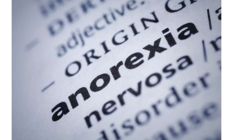 Inner voice of anorexia under investigation with help from people with lived experience
