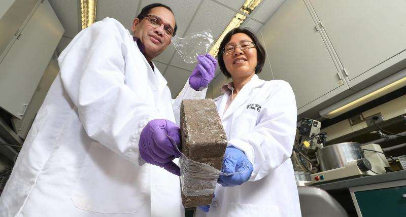 Innovative process produces biodegradable cellulose-based films