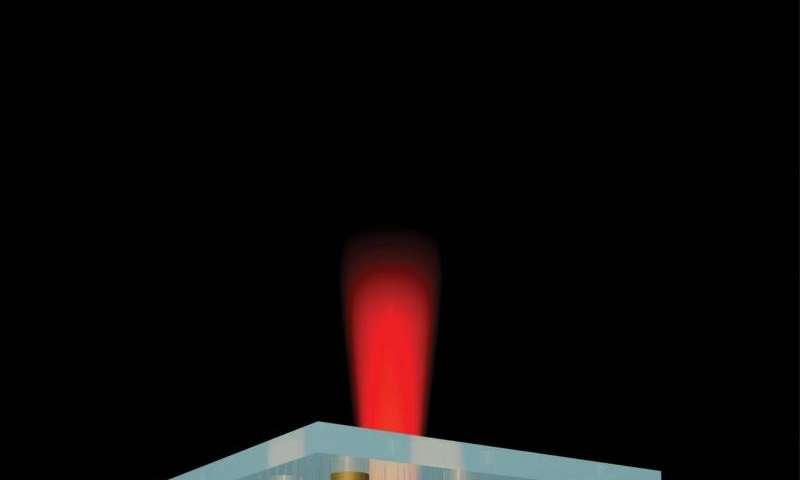 In plasmonics, 'optical losses' could bring practical gain