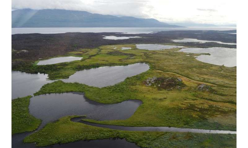 Large and increasing methane emissions from northern lakes