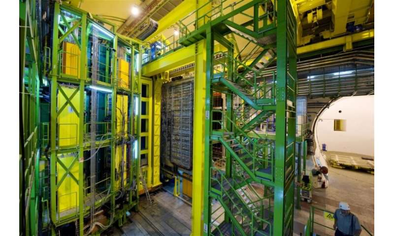 LHCb unveils new particles
