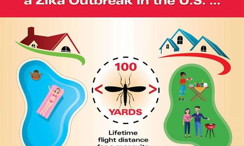 Likelihood of widespread Zika outbreak in United States low