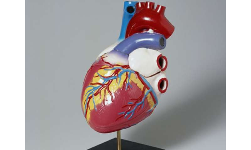 Lipid tx cuts cardiovascular risk with type 1 diabetes