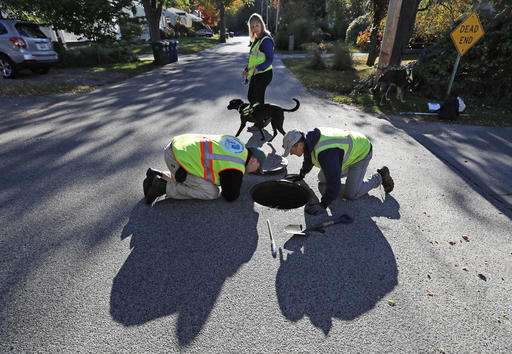 Looking out for No. 2: Dogs sniff out fecal pollution