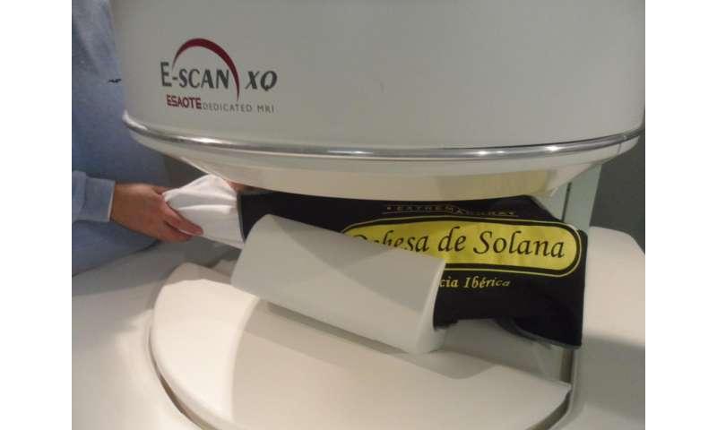 Magnetic Resonance Imaging to predict the salt content of Iberian ham