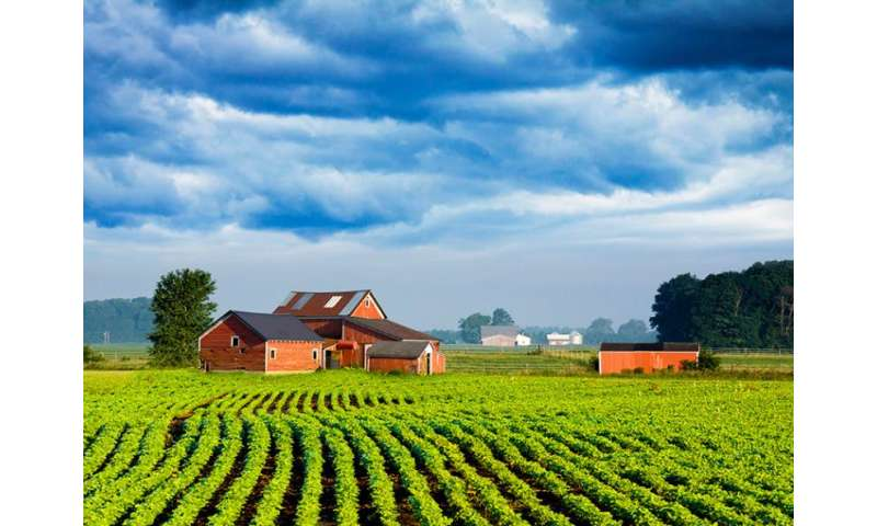 Medical school program addresses rural physician shortage