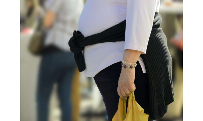 Modern lifestyle primary culprit for obesity epidemic: study
