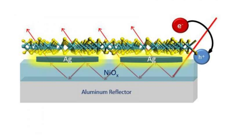 Molybdenum disulfide holds promise for light absorption