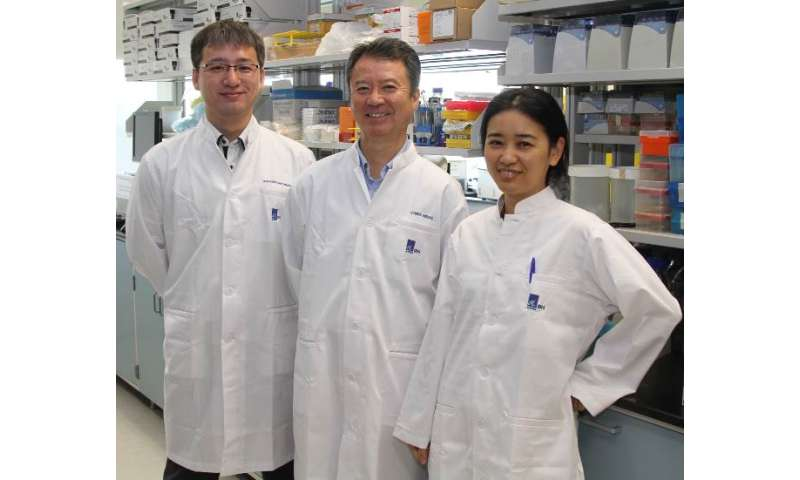 More efficient DNA technology for targeted disease detection and treatment