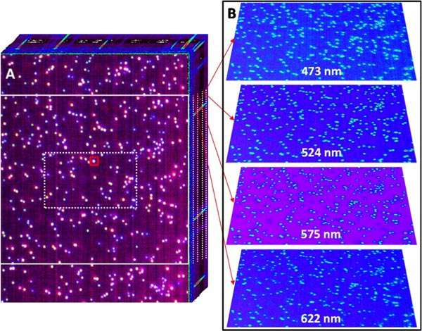 Multimodal spectral imaging now possible using any optical microscope