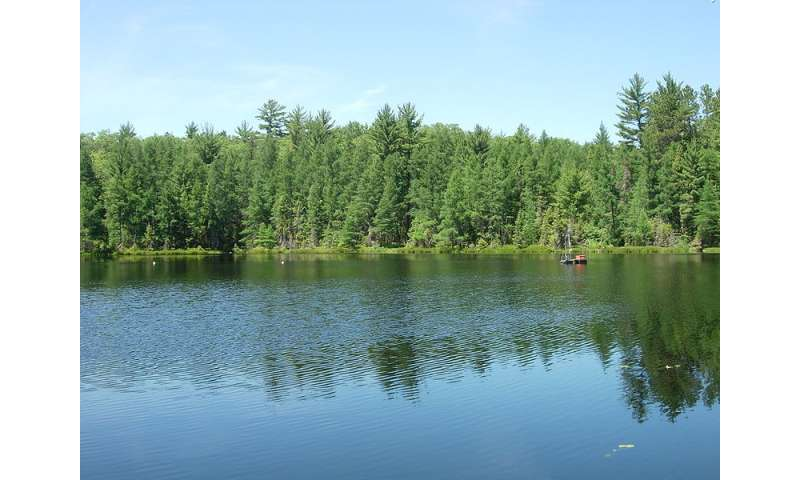 Multiple methods for microbial diversity in one lake