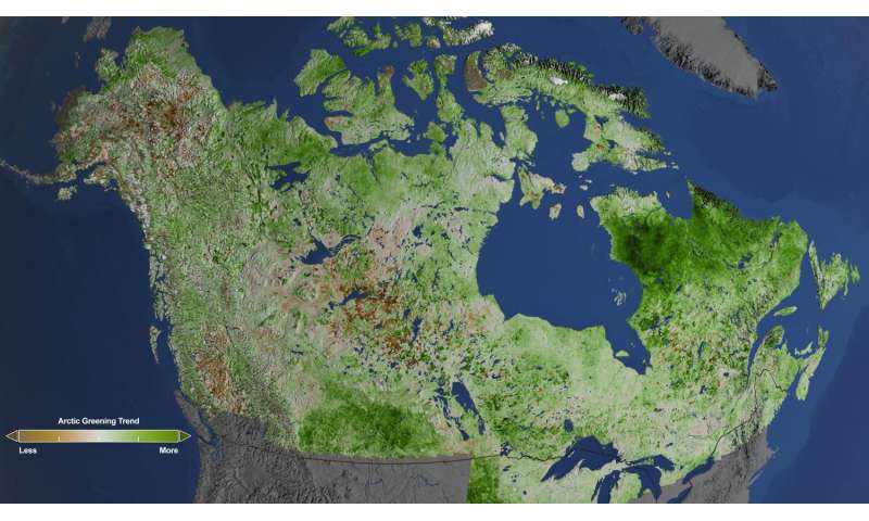 NASA studies details of a greening Arctic