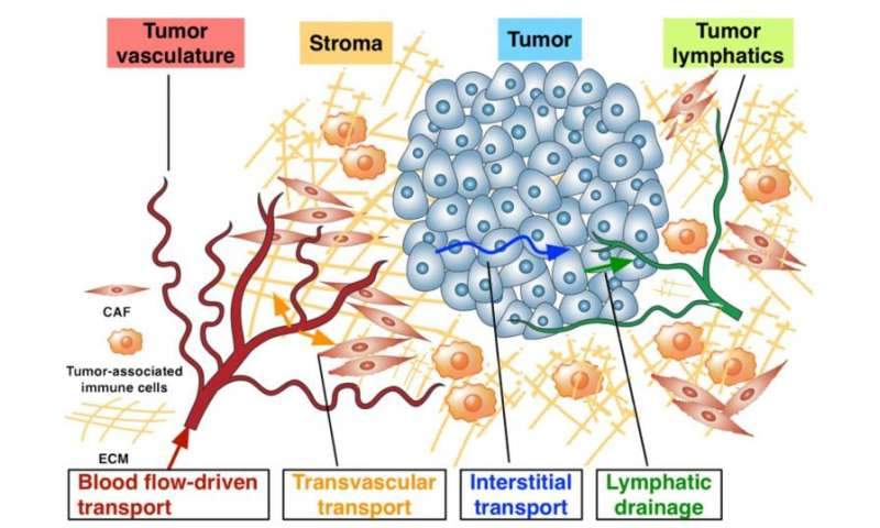 New direction urged to improve cancer nanotechnology