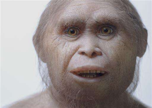 New fossils push 'hobbit' story back to 700,000 years ago