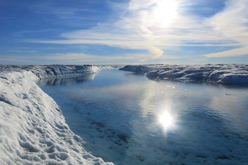 New genome reveals how Arctic microbes survive in cold extreme habitats