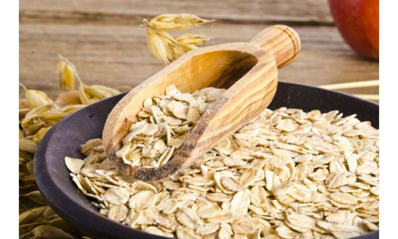 New recipes show how oats and barley can make our favourite meals healthier