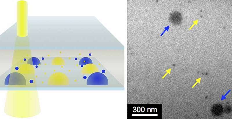 New tool allows scientists to visualize 'nanoscale' processes