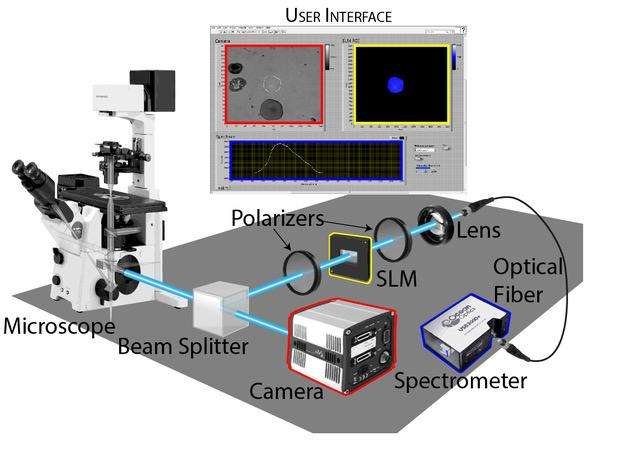 New tool enables viewing spectrum from specific structures within samples