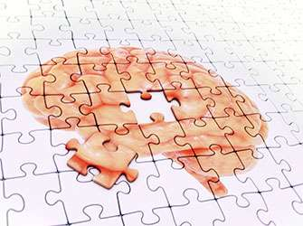 No clinical symptoms in study of Alzheimer's transmissibility