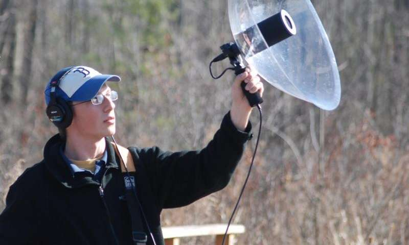Nocturnal migrating songbirds drift with crosswinds and compensate near coastal areas