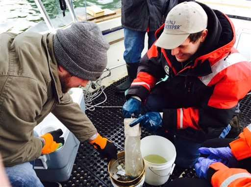NYC waters are teeming with plastic particles, study finds